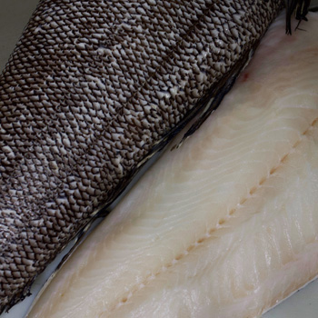 Wholesale Pacific Seafood Distributor in Buffalo & Rochester